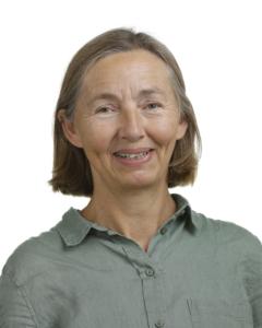 Karen Nyholt